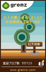 グリムス3本目大人の木.jpg
